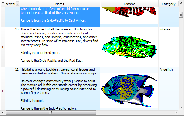 Draw graphics and memo data from blob fields.